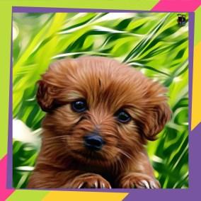puppie picture #MadeWithPicsArt