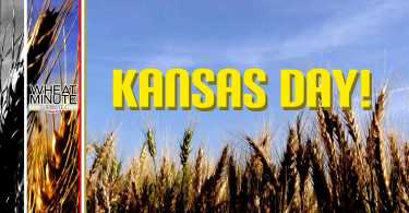 Have A Greay Kansas Day Wishes Image