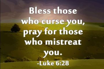 Curse Quotes bless those who curse you pray for those who mistreat you