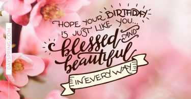Happy Birthday Quotes hope your birthday is just like you