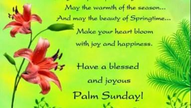 38 Best Palm Sunday Images Wishes Greetings Photos Picsmine