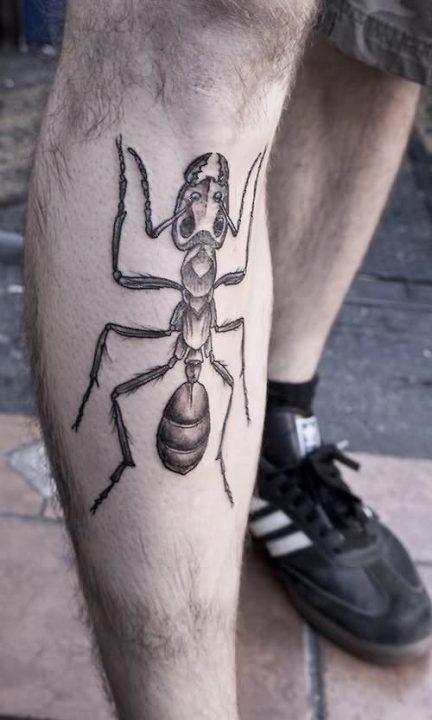 Ant Tattoos Idea Design for Tattoos Lover 22