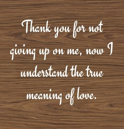 Appreciation Quotes thank you for not giving up on me
