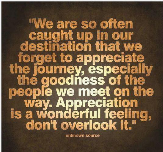 Appreciation Quotes we are so often caught