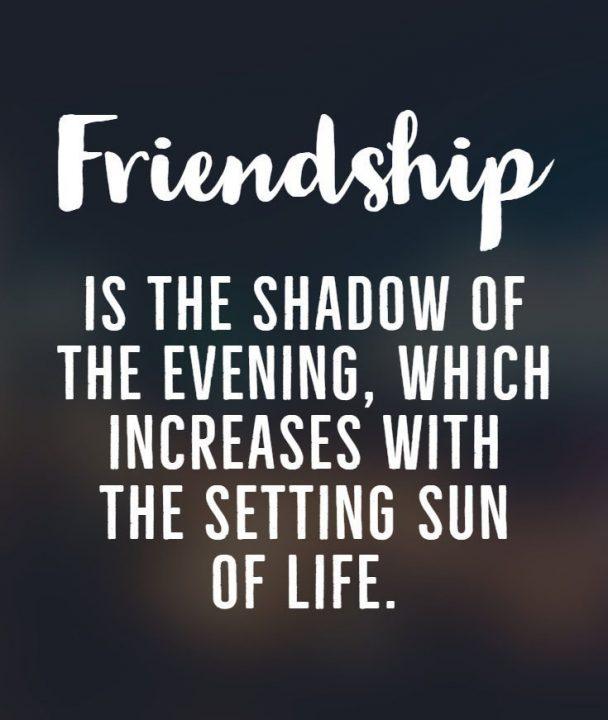 Best Friend Quotes 02
