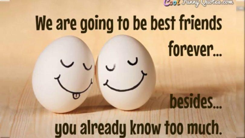 Best Friends Quotes 11