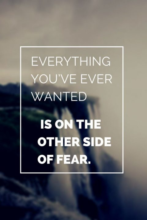 everything you've ever wanted is the other side of fear.