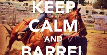 Barrel Racing Quotes