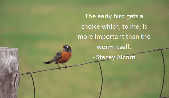 Birds Quotes Images 02