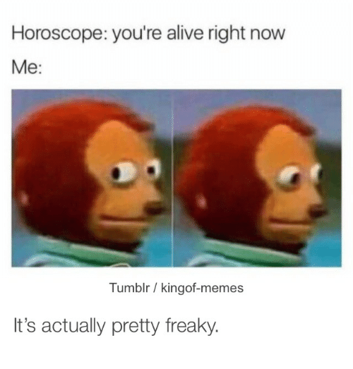 freaky memes tumblr horoscope you're alive right now me