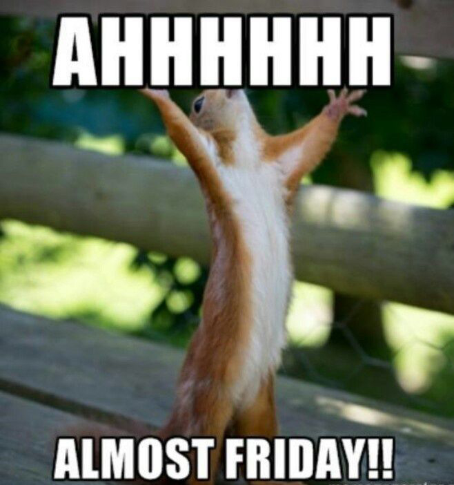 AHHHHH Almost Friday