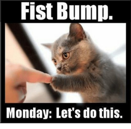 Fist Bump. Monday Lets Do This