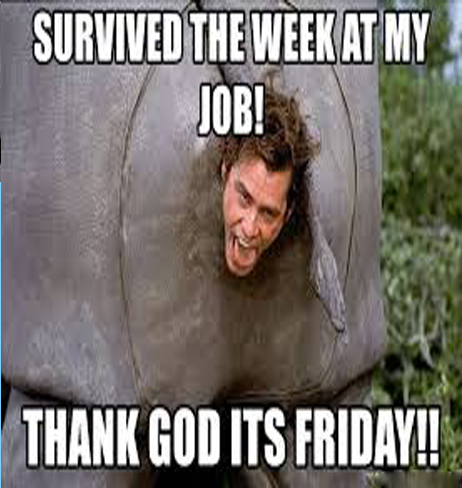 Survived The Week At My Job