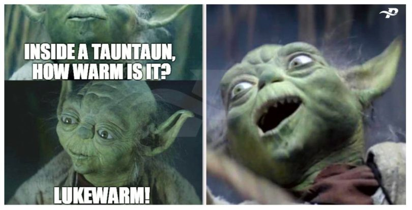 funny yoda memes inside a tauntaun, how warm is it lukewarm