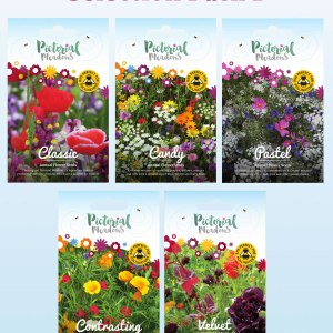 Selection Pack B - Annual Meadows