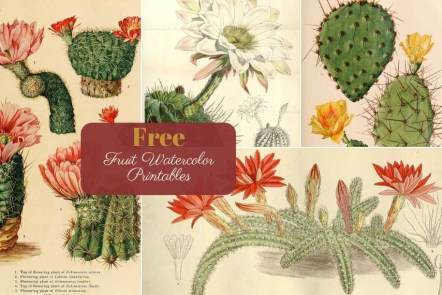 Free Printable vintage cactus paintings