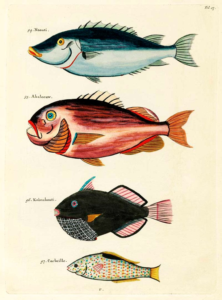 Free fantastical fish prints