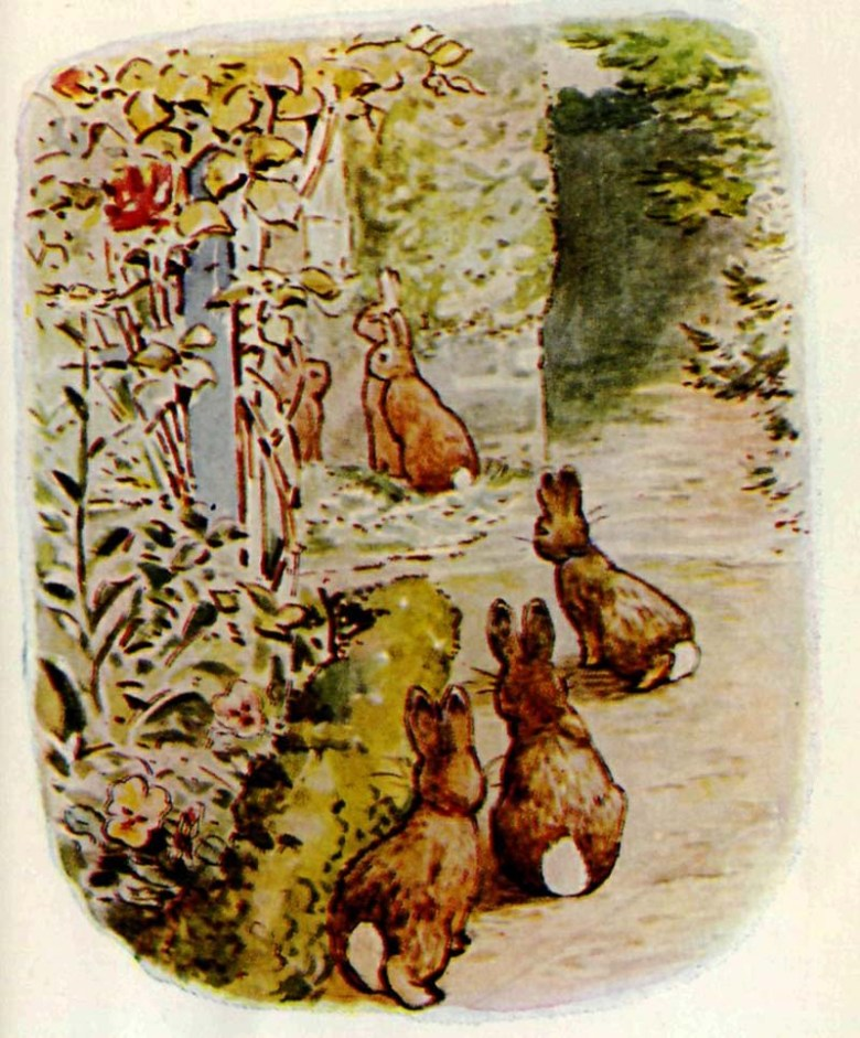 "he Beatrix Potter book ""The Tale of The Flopsy Bunnies"","