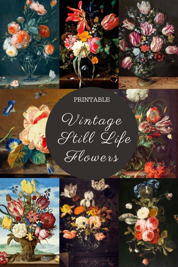 Floral Still Life Prints