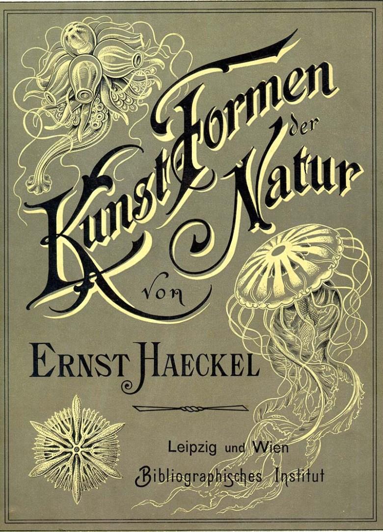 """cover to Ernst Haeckel book """"Kunst-Formen von Natur"""""""
