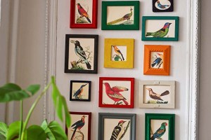 rainbow repurposed old picture frames