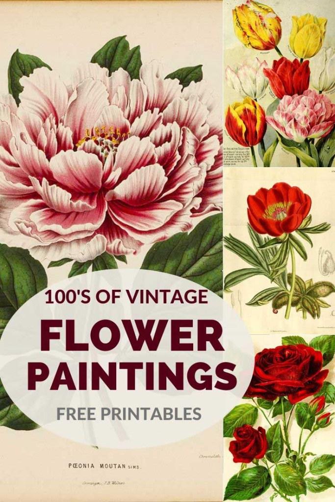 vintage flower paintings