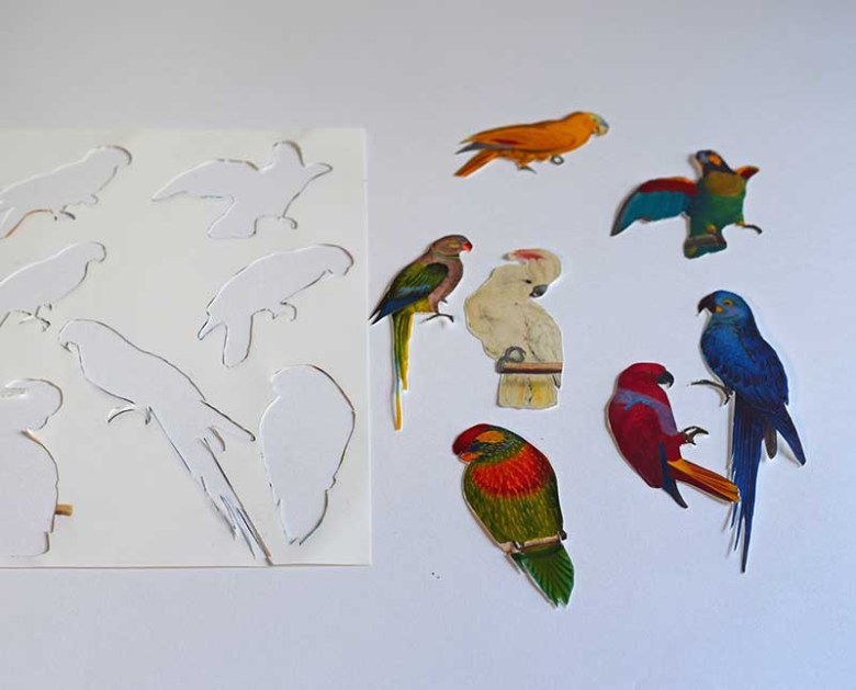 Parrot cutouts