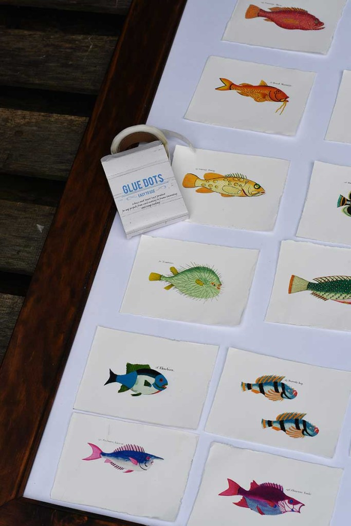 using glue dots to arrange vintage fish watercolor postcards.