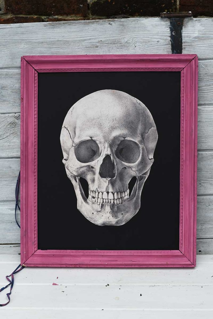 DIY Skull decor in frame