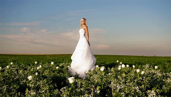 beginner wedding photography