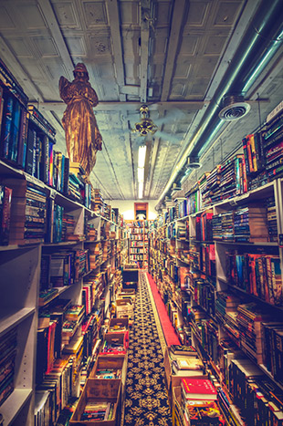 """Bookman-Bookwoman"" captured by This Room Became A Hill. (Click image to see more from This Room Became A Hill.)"