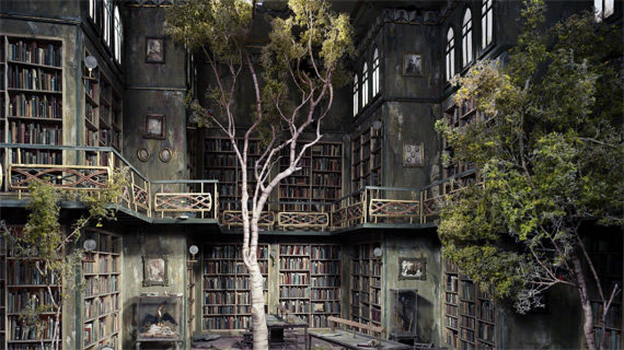 Trees growing into a library