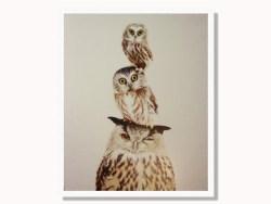Stacked Owls Framed Print