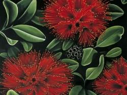 Pohutukawa Art card by Diana Adams