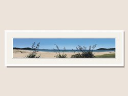Endless Summer Framed Print by Alison Gilmour