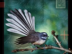 Fantail Print by Julian Hindson