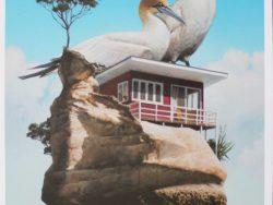 Gannet Rock Print by Barry Ross Smith
