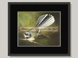 Fantail Framed Print by Sarah Power