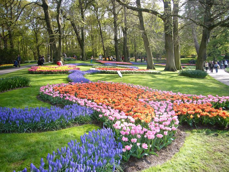 World Largest Flower Garden - Netherlands (5)