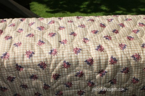 The Reveal - Quilting Closeup of Back - piecefulthoughts.com