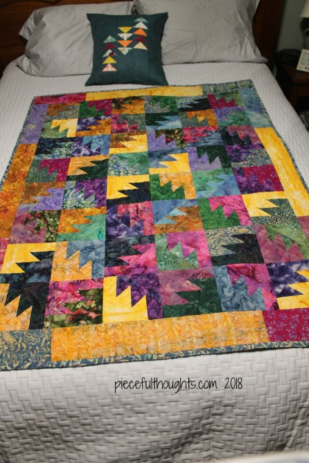 Flashback Friday - Thunderstruck Quilt, pattern by Judy Martin - piecefulthoughts.com 2018