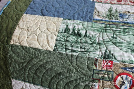 Minnesota Monday - Detail View of Quilting by Turnberry Lane Quilting - piecefulthoughts.com 2018