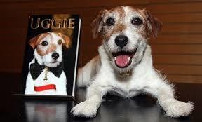 Uggie Tribute