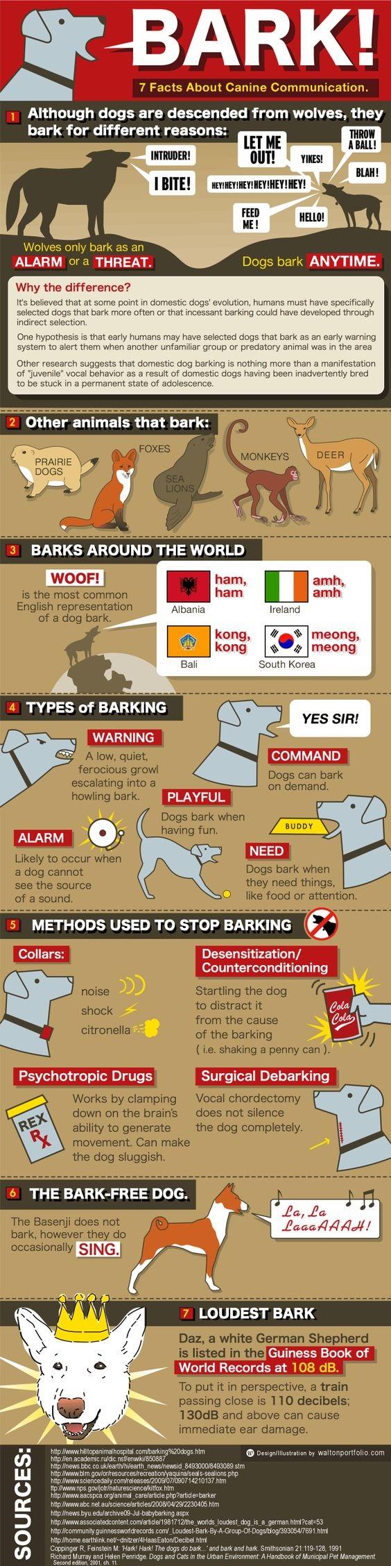 Bark Infographic