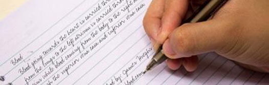 Outsource-multilingual-content writing-services