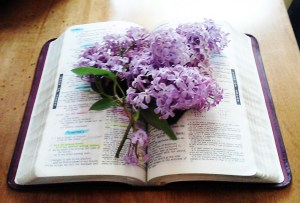Bible with lilacs