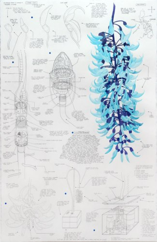 """Justin Amrhein - """"Jade Vine,"""" 2014, Graphite and watercolor on paper, 39.5 x 25.5 inches"""