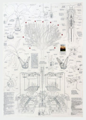 """Justin Amrhein - """"Replacement Cherry Tree,"""" 2013, Graphite, acrylic and collage on mylar, 57 x 40 inches"""