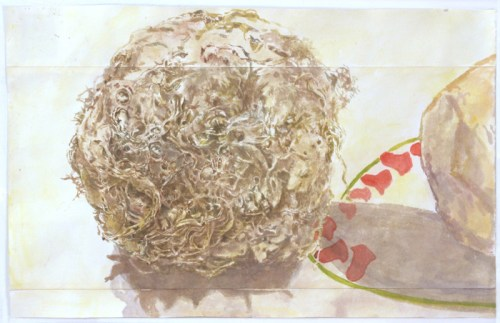 Celery Root and Rutabaga - 2014, Watercolor on paper, 12.5 x 19.75 inches