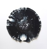 Harmoney of the Spheres L-24161M1 - 2014, Untrimmed phonograph, approx. 12 x 12 inches